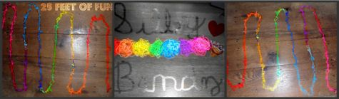 Silly-bandz-collage