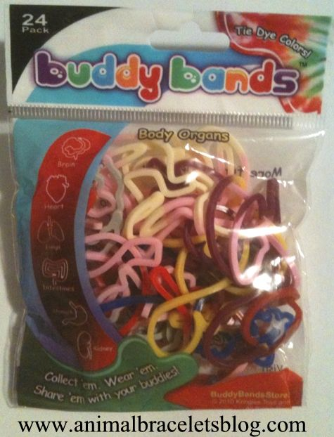 Buddy-bands-body-organs-pack